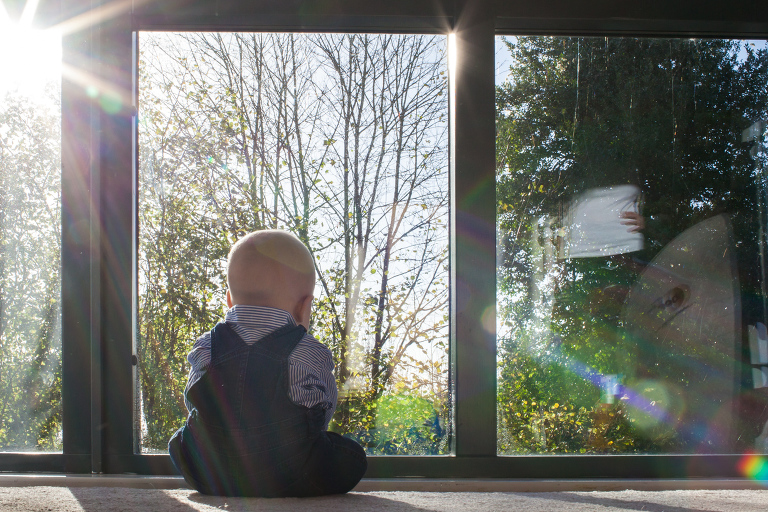 Little boy by sunny window